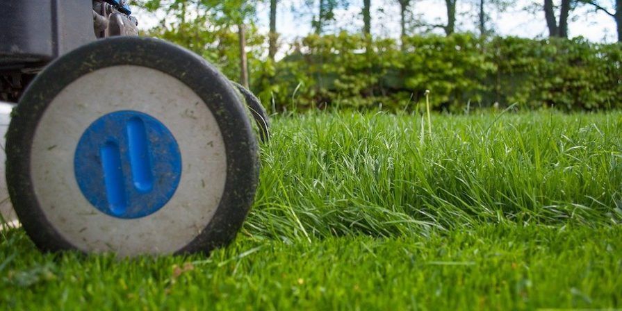 Lawnmower wheel and two lengths of grass