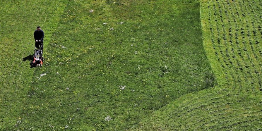 Person mowing the lawn aerial view