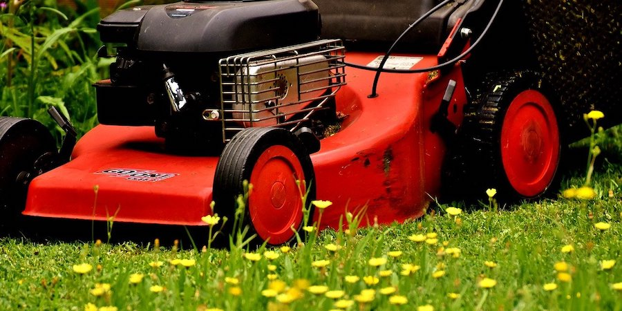 Red mower in a meadow of yellow flowers