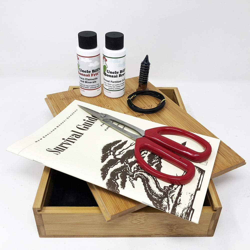 Tinyroots Bonsai Tree Starter Tool Kit