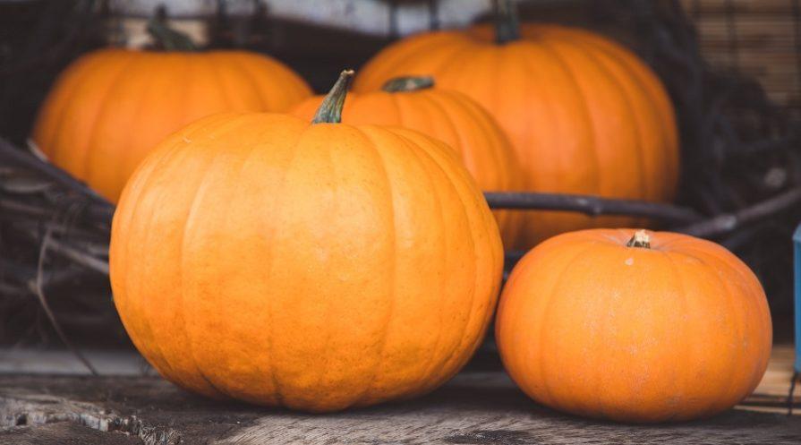 four delicious pumpkins