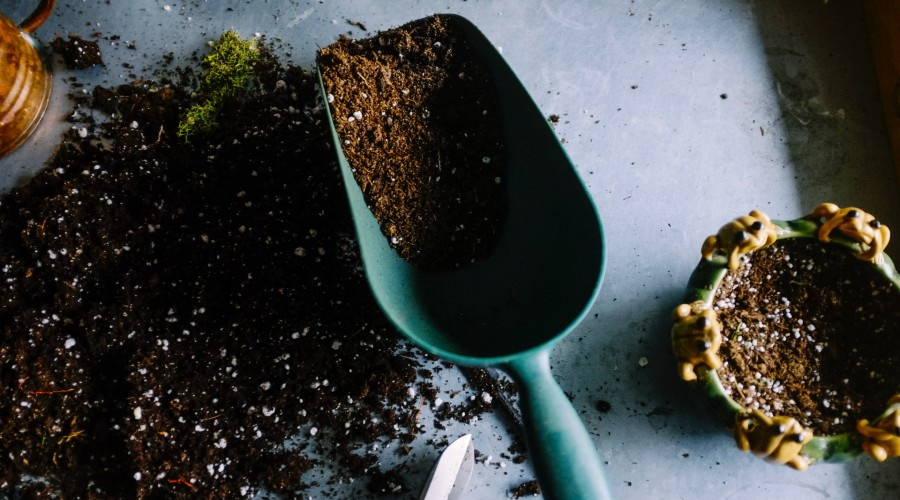 gardening tools and soil