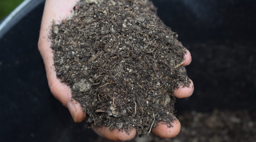 a hand with a handful of organic mulch