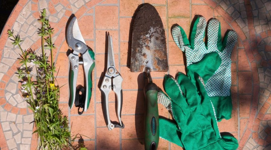 gardening tools laid out on a brick surface