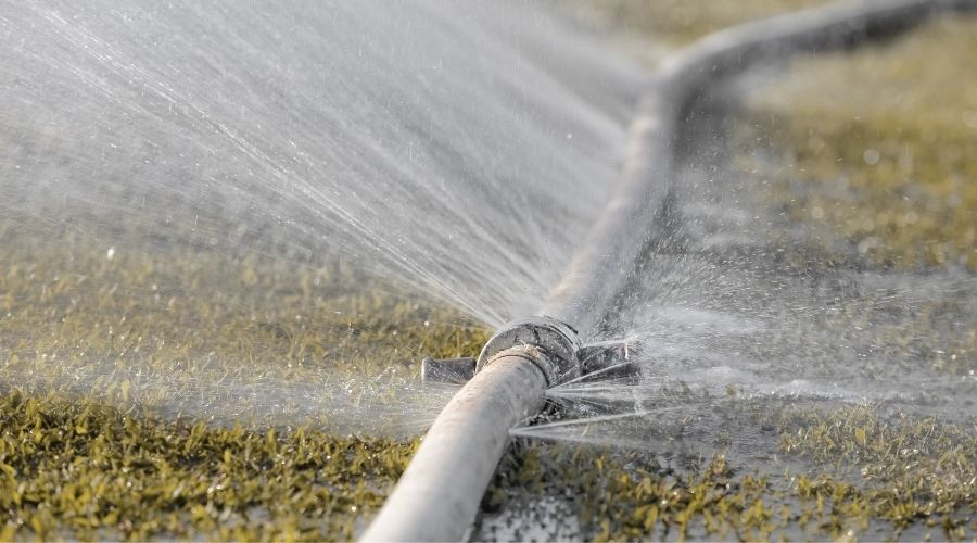 a grey hose leaking water while laying in the grass