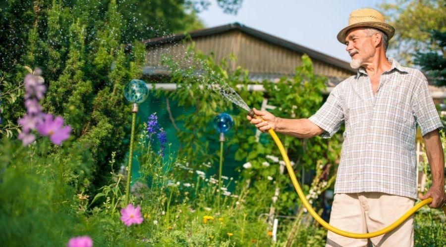 man watering his garden with a garden hose