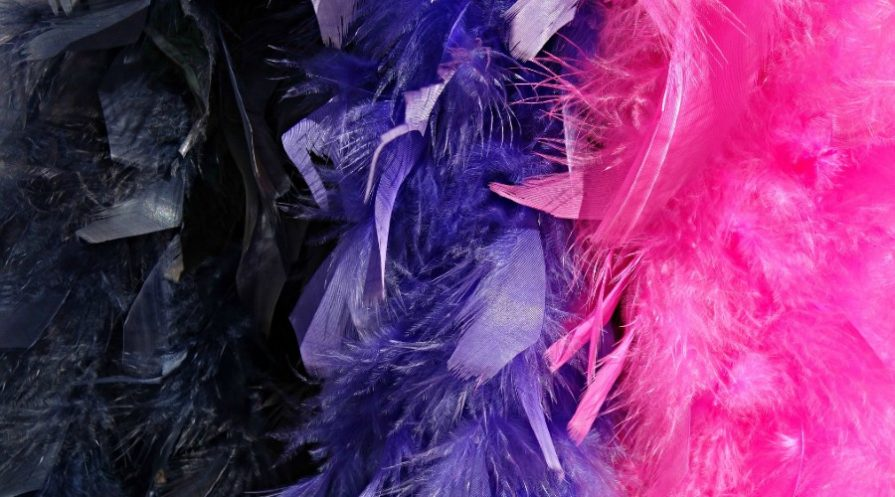 Black, purple, and pink feather boas hanging side by side