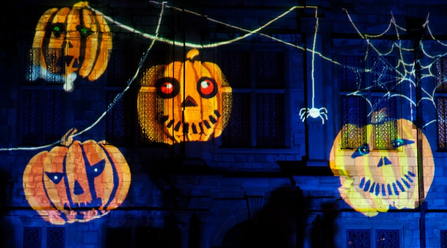 pumpkin and spiders Halloween light projector on a house