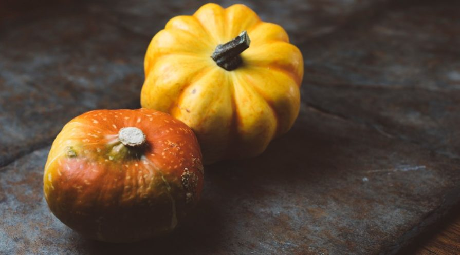 Miniature pumpkins on a dark background