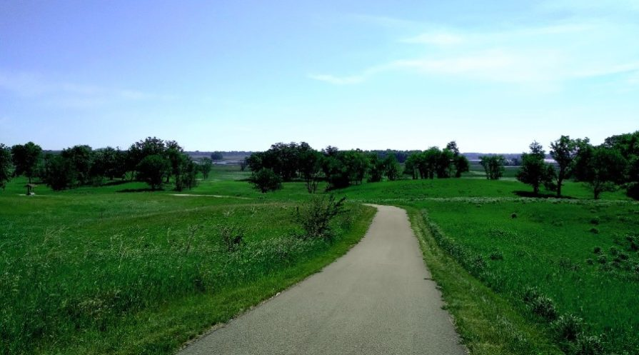 paved running trail through open fields dotted with trees