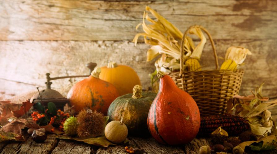 Thanksgiving decor on wood background