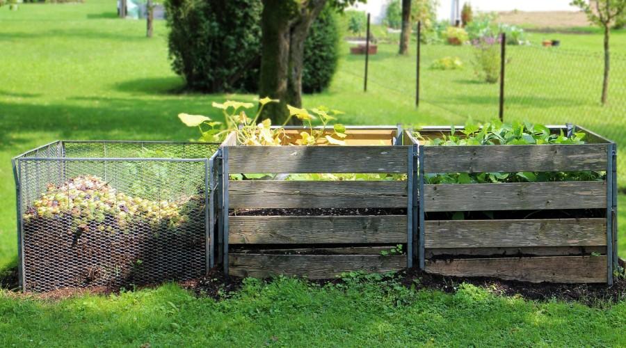 compost bin next to raised gardens