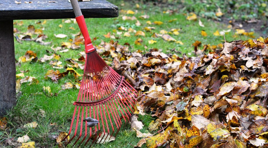 red metal rake propped up next to a pile of fall leaves